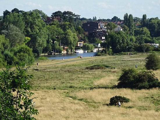 Chester Meadows