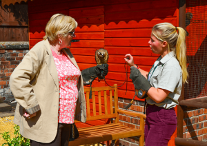 Falconry & Nature Gardens