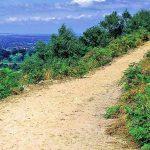 The Sandstone Trail