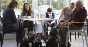 The Pet Cafe