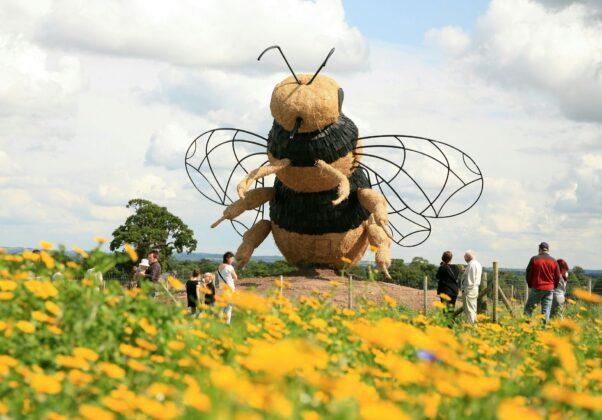 Snugburys Ice Cream Farm Bee Sculpture